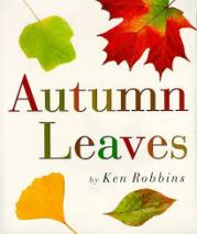 Autumn Leaves, by Ken Robbins- Age Range: 2 and up